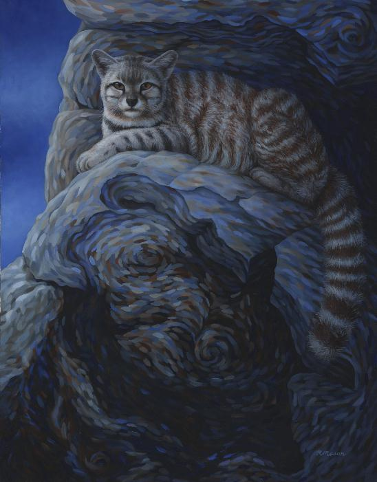Andean mountain cat painting by Rochelle Mason