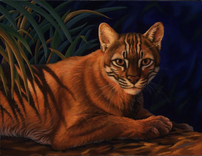Asian golden cat painting by Rochelle Mason