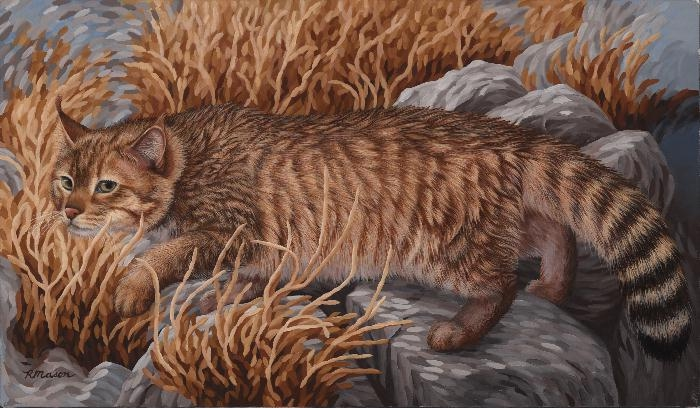 Chinese mountain cat painting by Rochelle Mason
