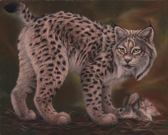 Iberian lynx painting by Rochelle Mason