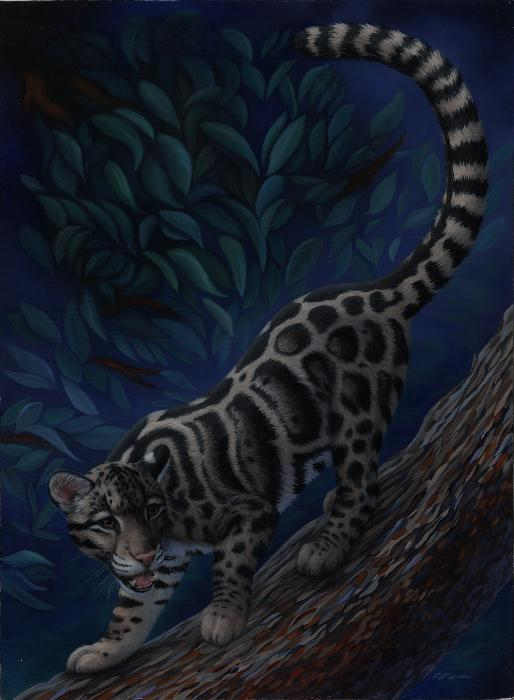 Clouded leopard painting by Rochelle Mason