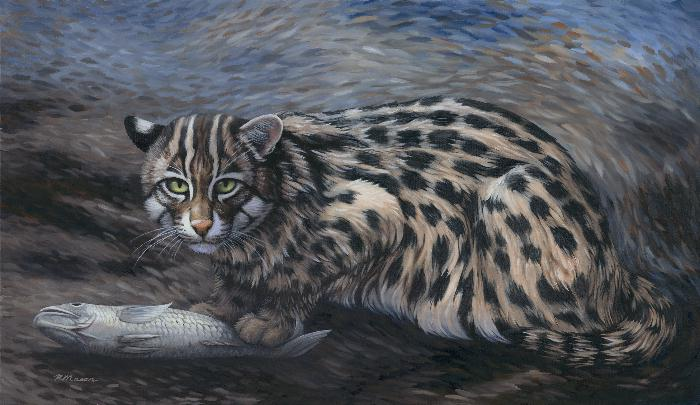 Fishing cat painting by Rochelle Mason