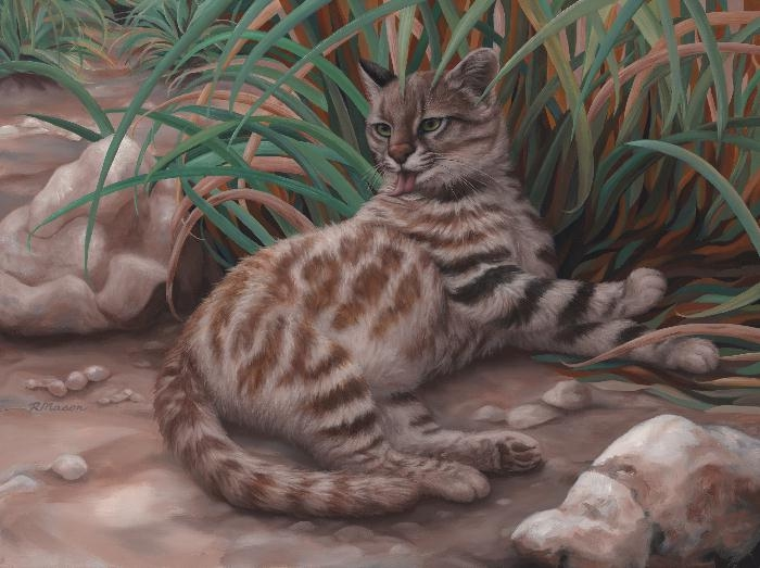 Pampas cat painting by Rochelle Mason