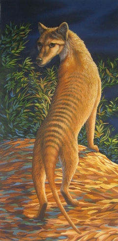 Thylacine painting by Rochelle Mason